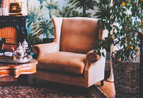 Braon fotelja i biljke